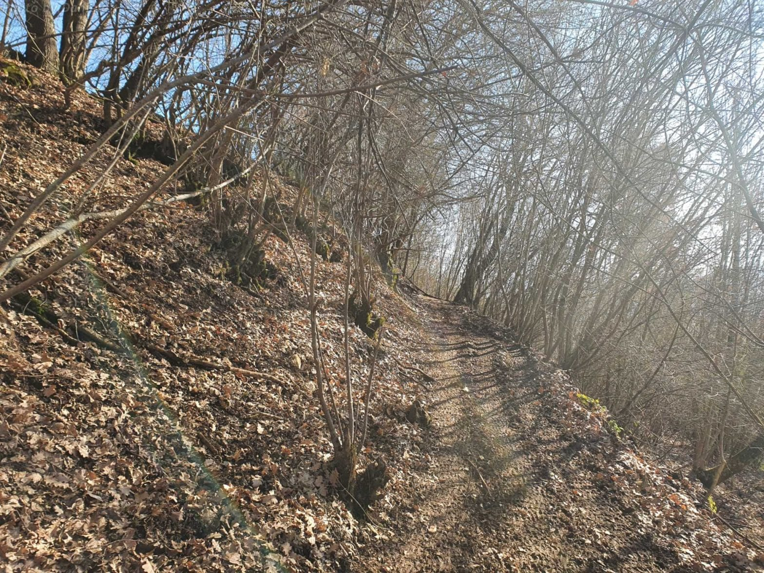 Sentiero di montagna a Norcia con foglie secche